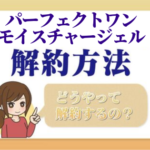 perfect_one_kaiyaku