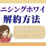 anythingwhite_kaiyaku