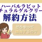 herbal_rabbit_kaiyaku