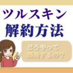 tsuru_skin_kaiyaku