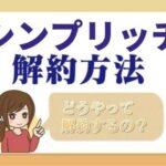 sinpu_rich_kaiyaku