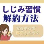 sizenshokken_kaiyaku
