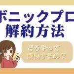 bnc_pro_kaiyaku
