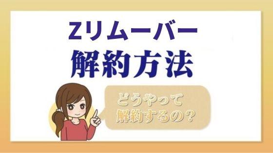 z_remover_kaiyaku